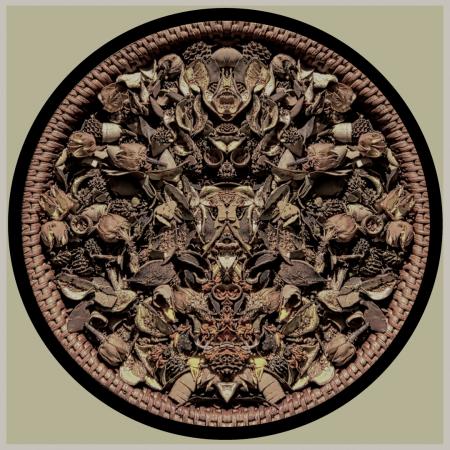 artist stephen calhoun