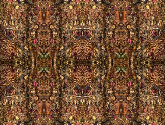 eightfold-marian-anthropology-68x47-stephen-calhoun