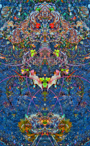 Stephen Calhoun, artist