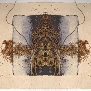 Desse's Desire IV - Stephen Calhoun, artist