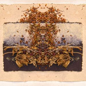 Desse's Dream I - Stephen Calhoun, artist