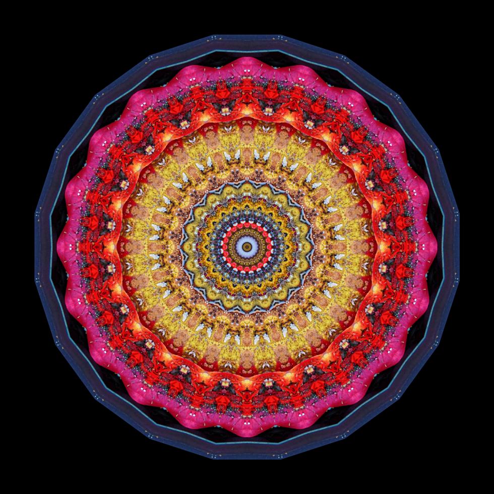 Madhyamika Pillow - Stephen Calhoun
