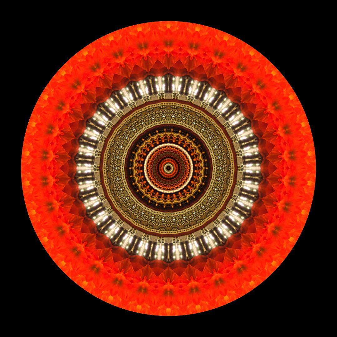 Mandala For Sidi Bel Abbas - Stephen Calhoun