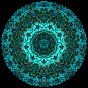 Odidi Mandala #1 - stephen calhoun