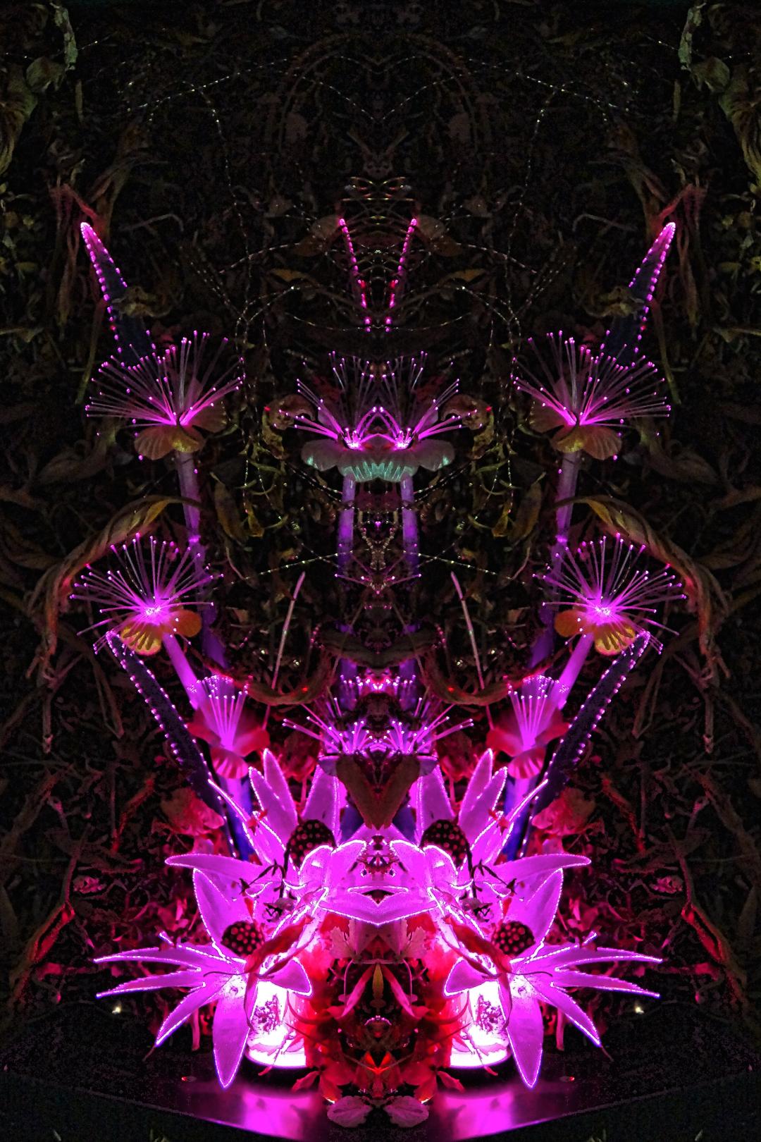 stephen calhoun