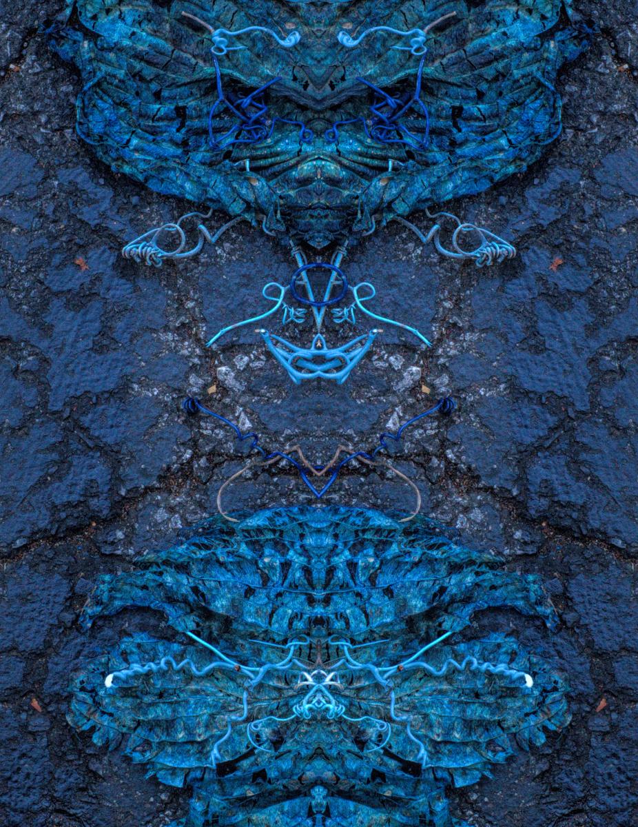 Knysna Blue Verticum - Stephen Calhoun