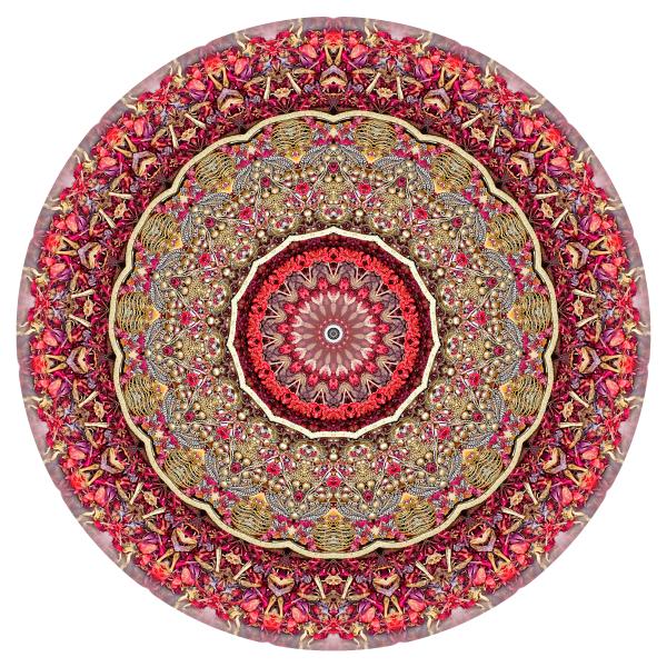 Red Mandala #1 - Stephen Calhoun