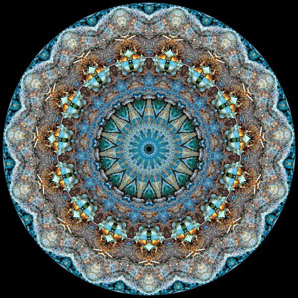 Twin Study II Mandala - Stephen Calhoun
