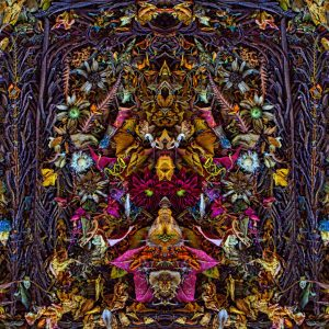 ENAM PULUH ENAM - Stephen Calhoun