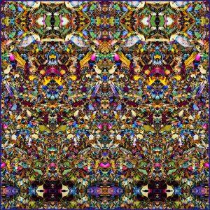 Tetralemma - Stephen Calhoun