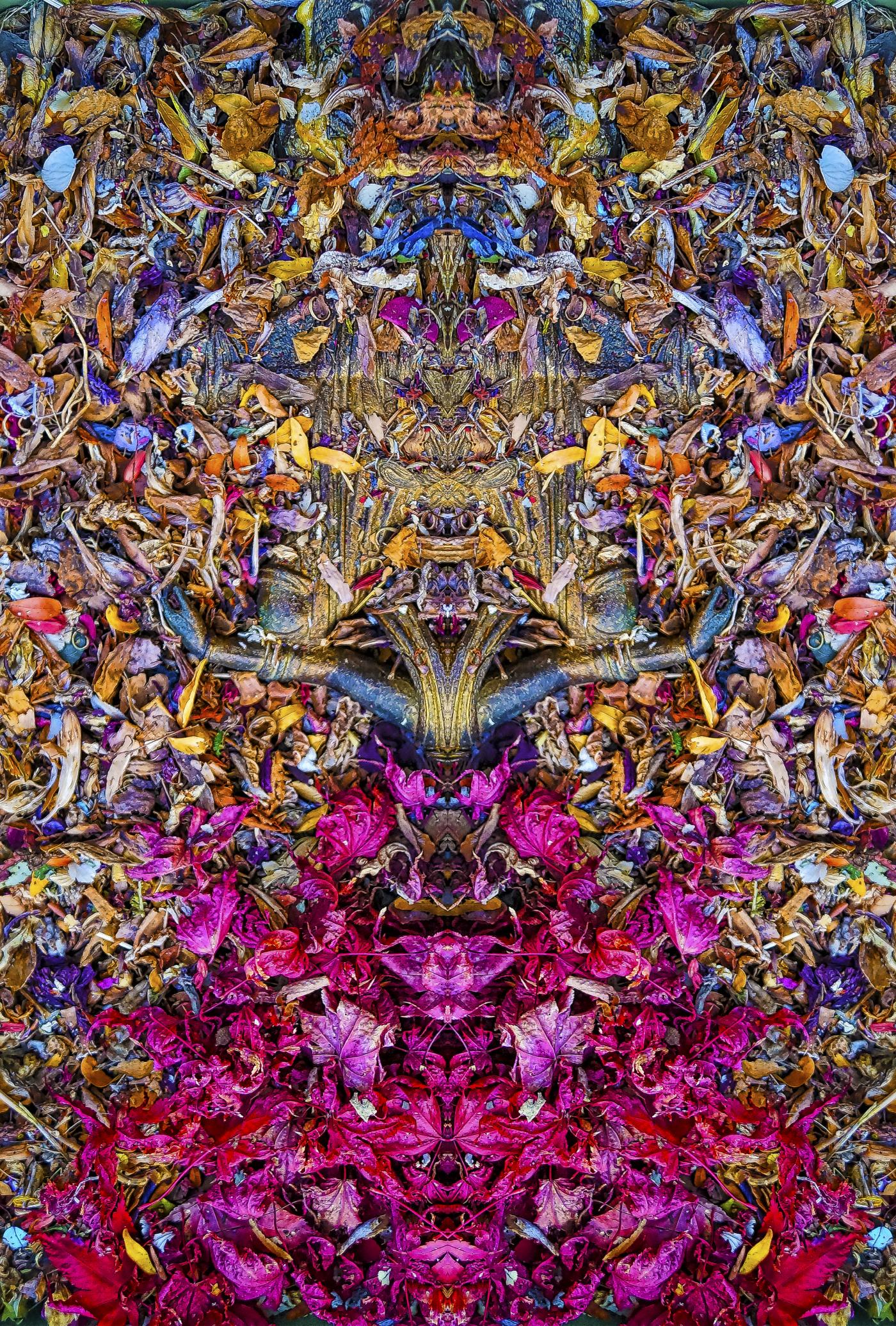 Stephen Calhoun artist
