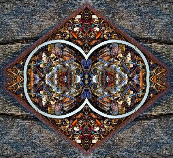 Signal II. - Stephen Calhoun