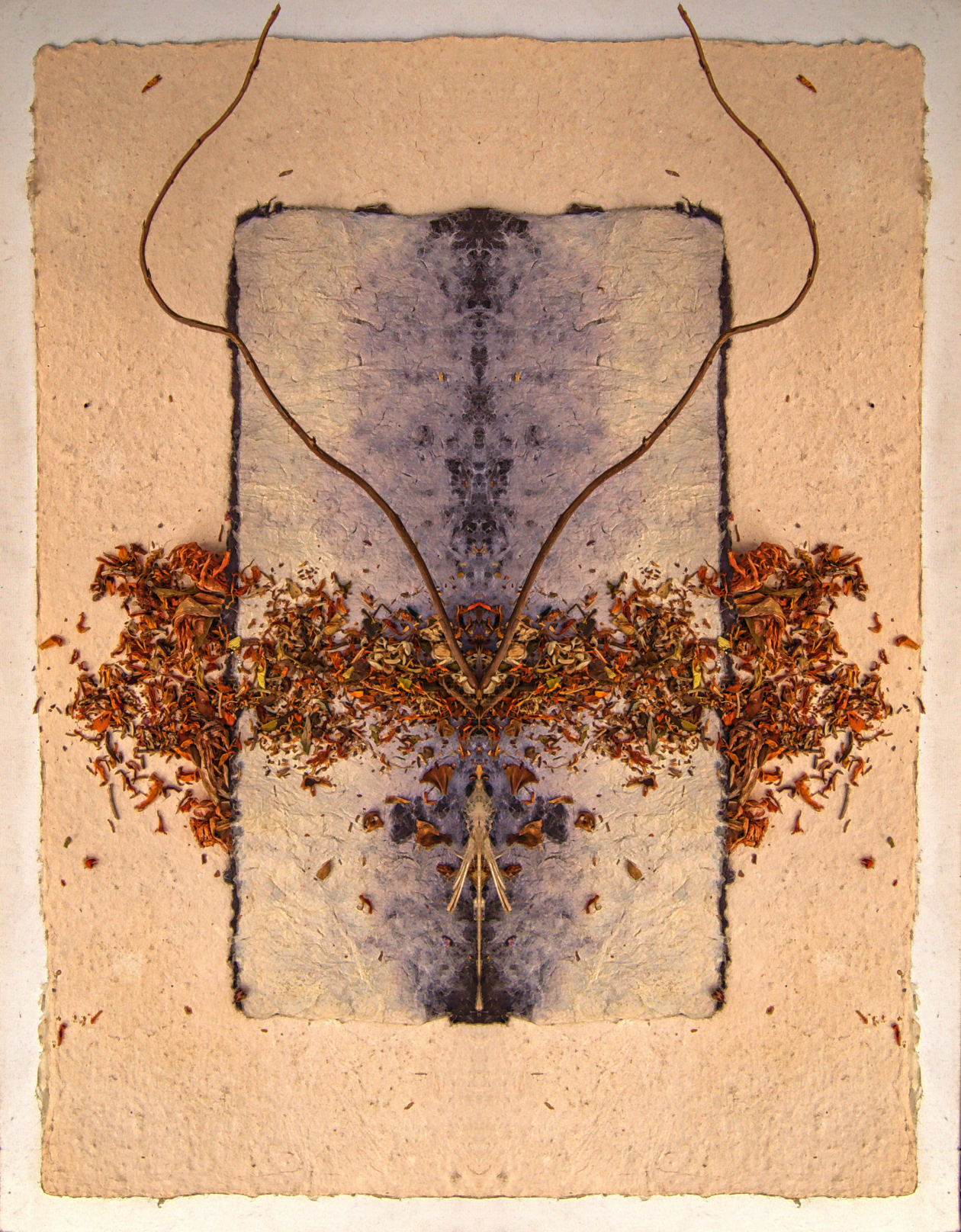 Desse's Desire - Stephen Calhoun, artist