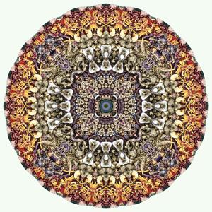 Terma Mandala - Stephen Calhoun