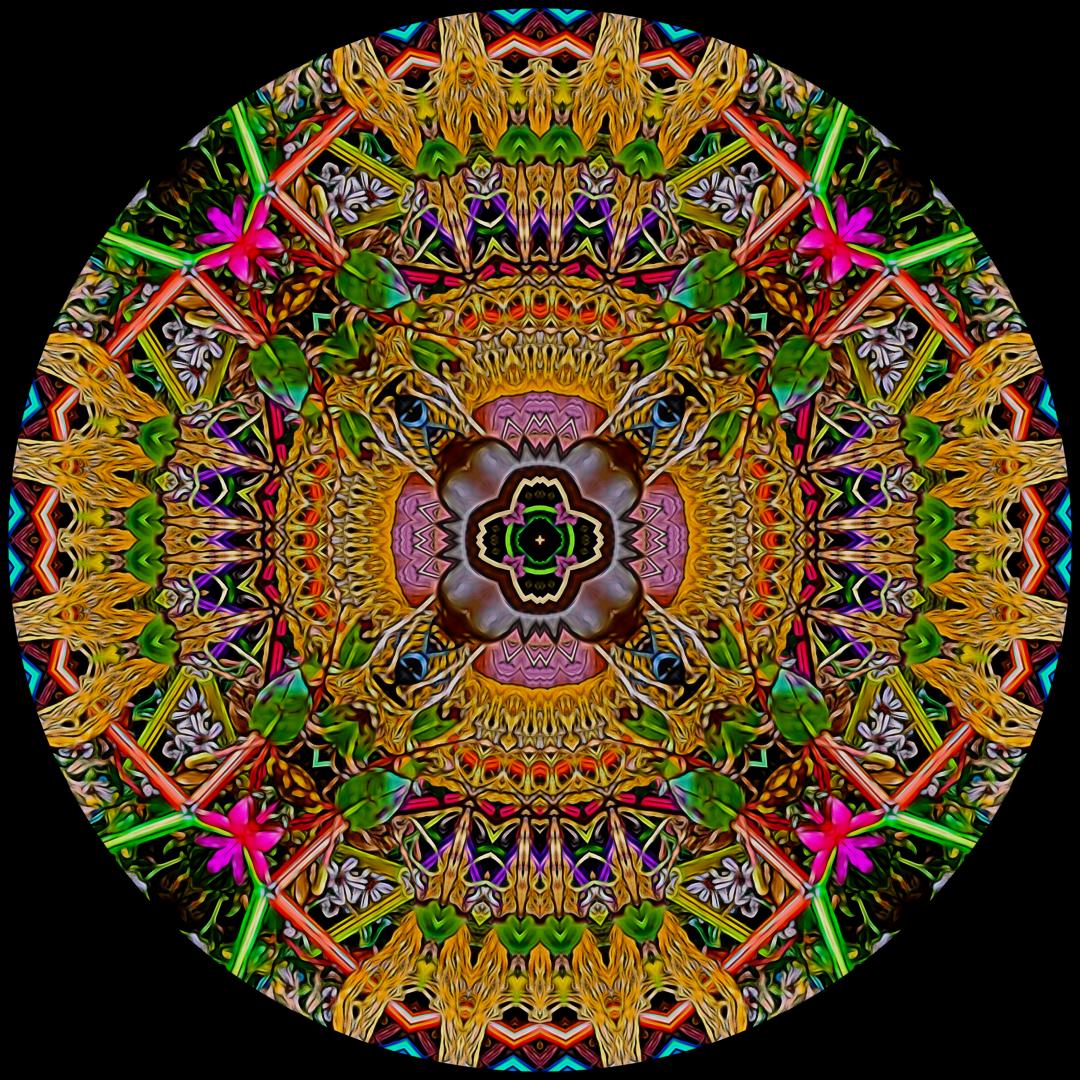 Stephen Calhoun, mandalas, mandala, artist, art, fine artist, museum