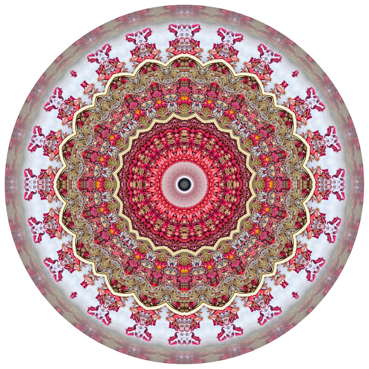 Red Mandala #2 - Stephen Calhoun