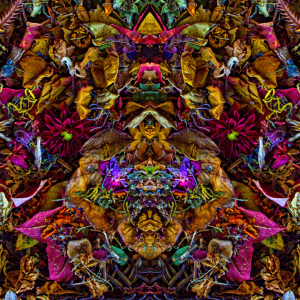 Empat Ratus Empat Belas - Stephen Calhoun