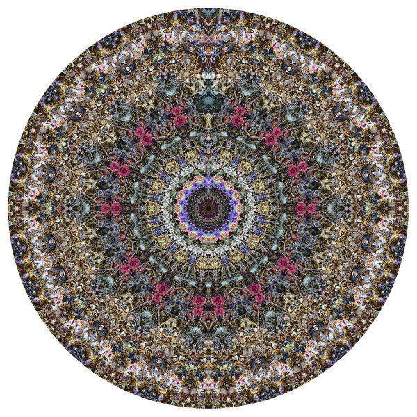 Lasting Hearts Singularity - Stephen Calhoun