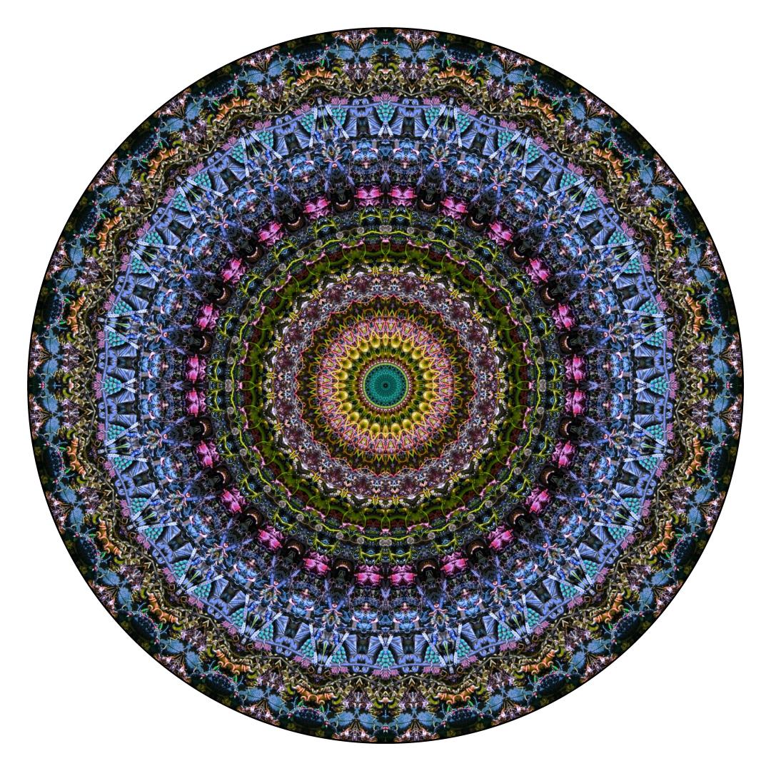 Stephen Calhoun - Bare Floor