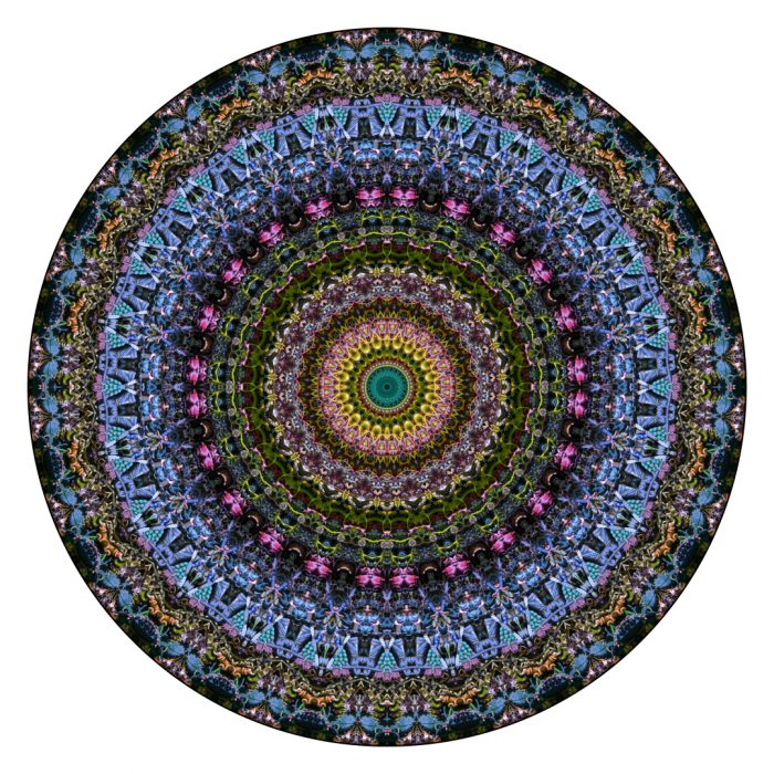 Bare Floor- Stephen Calhoun