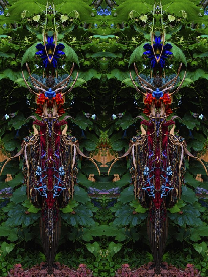 Twin Observers - Stephen Calhoun