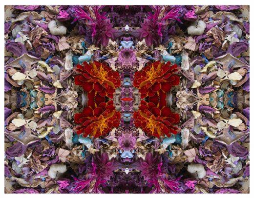 Stephen Calhoun - Spark Underfoot