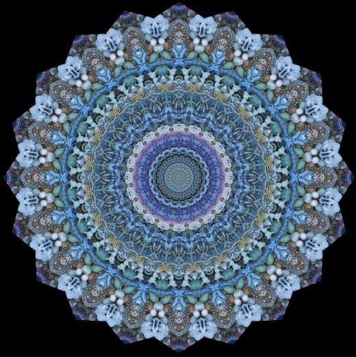 Stephen Calhoun - Blues Experiment Twenty Fifteen