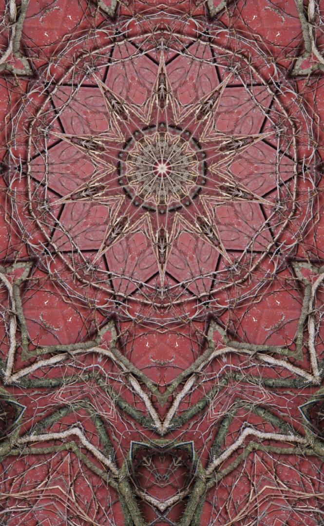 Stephen Calhoun - Earth Door