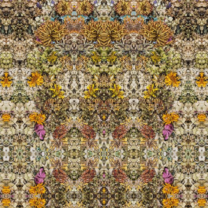 Symmetrical Interdependence (2019) Stephen Calhoun