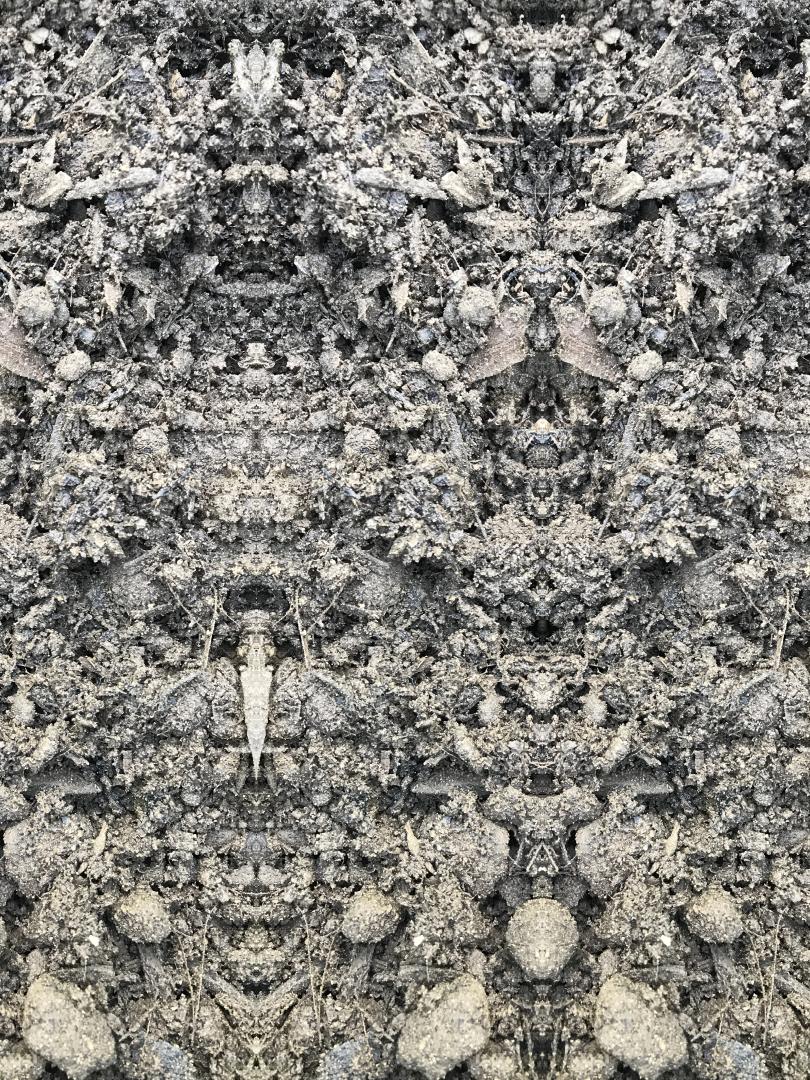 Bone Eaters - Stephen Calhoun
